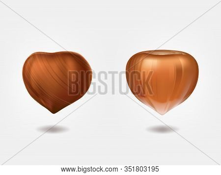 Ripe And Raw Hazelnuts Front View 3d Realistic Isolated On White Background. Filbert Edible Seeds. C