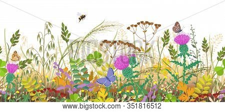 Seamless Horizontal Border With Autumn Meadow Plants And Insects. Floral Pattern With Fading Grass,