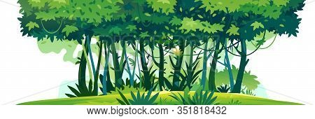 Wild Jungle Forest With Trees, Bushes And Lianas Standing On Green Lawn And Isolated On White Backgr