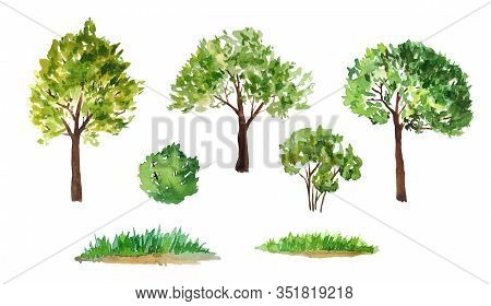 Hand Drawn Watercolor Illustration Set Of Green Summer Spring Tree With Brown Trunk Bush Grass. Pain