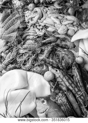 Black And White Image Of Big Assortment Of Fresh Seafood At Restaurant