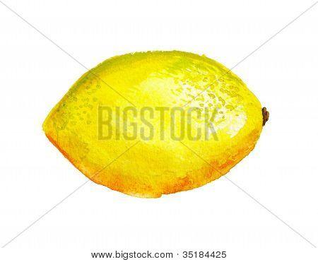 Watercolor Lemon