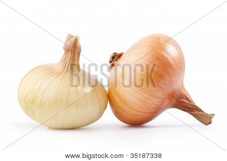 Two onions, with clipping paths