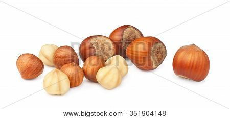 Hazelnuts Lie Isolated On A White Background