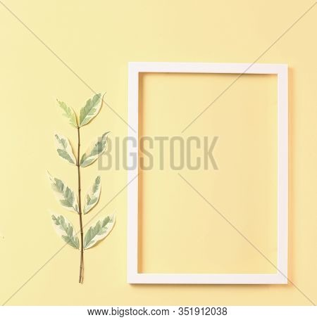 Nature Concept - Frame Made From White Photo Frame  And Fresh Leaves