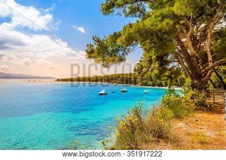 Zlatni Rat Beach, Golden Horn Or Golden Cape In Bol Town, Brac Island, Croatia. Gravel Beach, Pine T