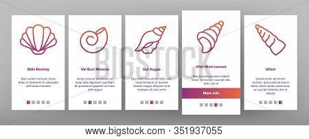 Shell And Marine Conch Onboarding Icons Set Vector. Nature Ocean Shell For Shellfish, Aquatic Decora