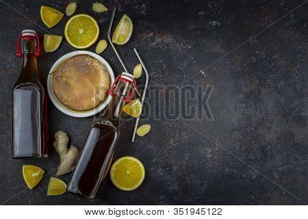 Kombucha Superfood Pro Biotic Tea Fungus Beverage In Glass Bottle With Orange, Grapefruit On Dark Ba