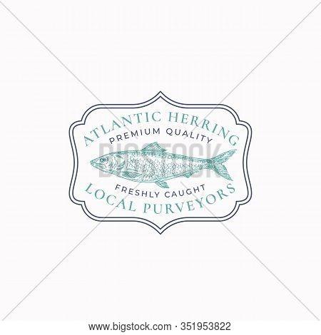 Fish Vintage Frame Badge Or Logo Template. Hand Drawn Wild Atlantic Ocean Herring Sketch Emblem With