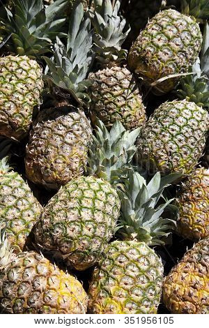 Lots Of Pineapple Fruit On A Asian Street Market.images For Printing, Advertising, Travel Magazines