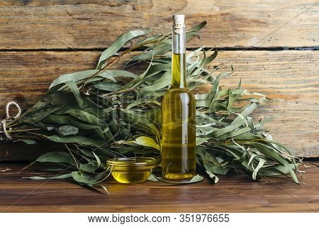 Eucalyptus Oil Cosmetics. Eucalyptus Leaves, Oil And Extract For Cosmetics And Aromatherapy (spa) Ba