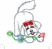 Bichon Frise Clipart of Dog Playing with Christmas Lights poster