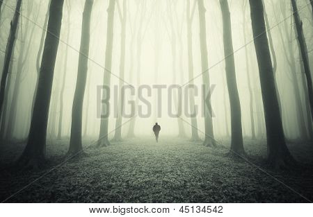Man walking in a dark surreal forest with fog
