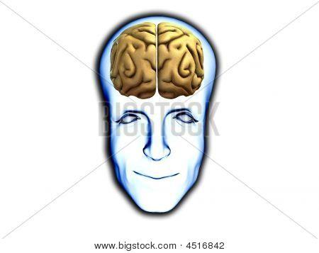 Smart Head With Brain