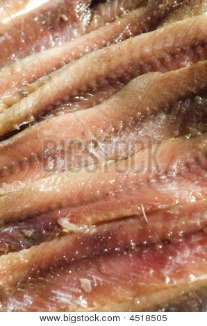 Flat Fillets Of Anchovies In Can