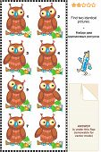 Visual puzzle: Find two identical pictures of cute wise owls. Answer included. poster