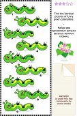 Spring or summer visual puzzle: Find two identical pictures of funny green caterpillars. Answer included. poster