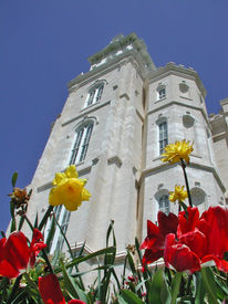 Manti Temple Perspective