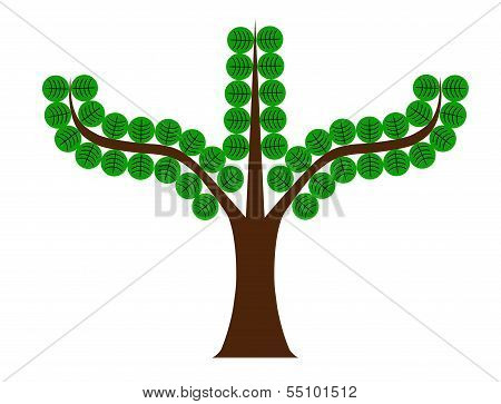 Tree With Round Leaves
