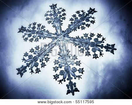 Close-up 3D illustration of a snow flake