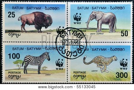 A stamp printed in Batumi shows elephant bison zebra and cheetah