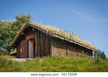 Typical norwegian building with grass on the roof