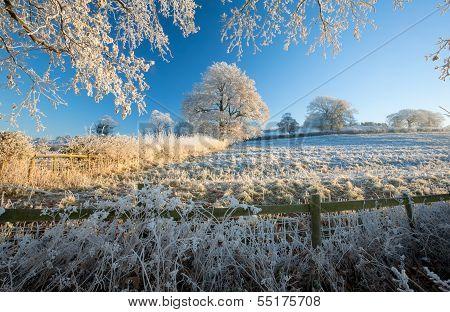 English Farmland in Winter