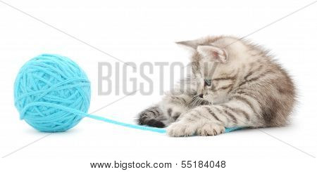 Kitten With Ball Of Yarn