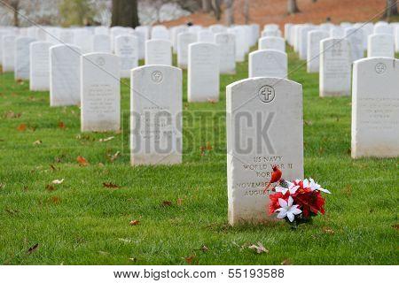 Headstones in Arlington National Cemetery near to Washington DC - United States