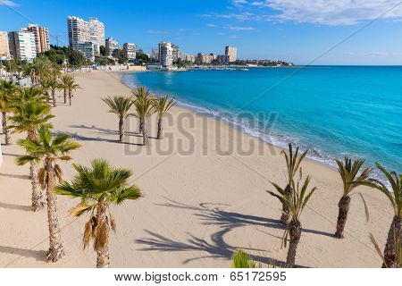 Alicante San Juan beach of La Albufereta with palms trees in Mediterranean Spain