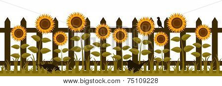 Fence With Sunflowers