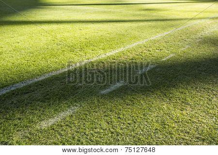 Lawn on a football field