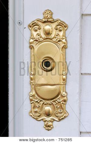 fancy doorbell