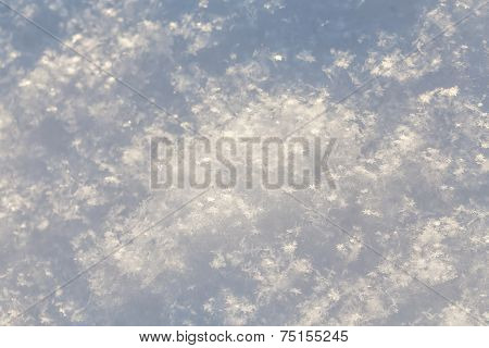 Pure white snow texture - cold winter shot poster