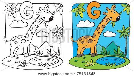 Coloring book of giraffe. Alphabet G