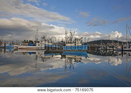 Fishing Fleet In Harbor