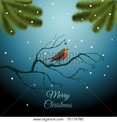 Christmas greeting card with robin and snow, eps10 vector