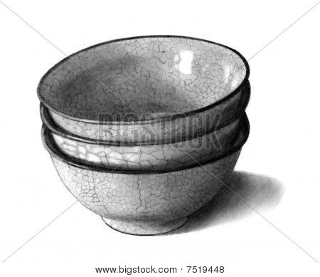 Pencil Drawing of Potted Bowls
