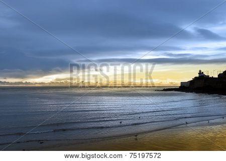 Lighthouse And Birds On Beach