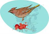 image of bird on a branch with sorbus berries and smudges of paint poster