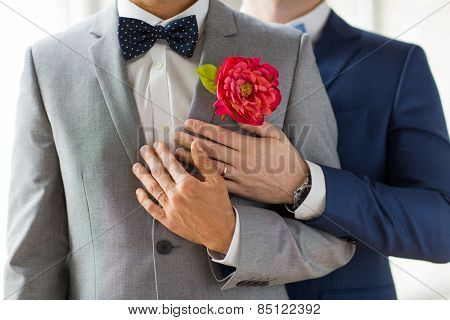 people, homosexuality, same-sex marriage and love concept - close up of happy married male gay couple in suits with buttonholes and bow-ties on wedding