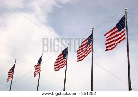 Flag234