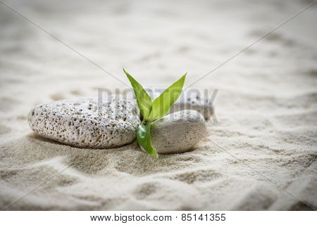 zen  stones and bamboo on the sand