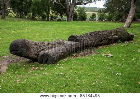 A Turtle Look Carved Wooden Bench In Yanchep National Park