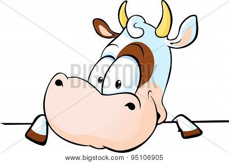 Cow Peeks Out From Behind A White Surface - Vector Illustration