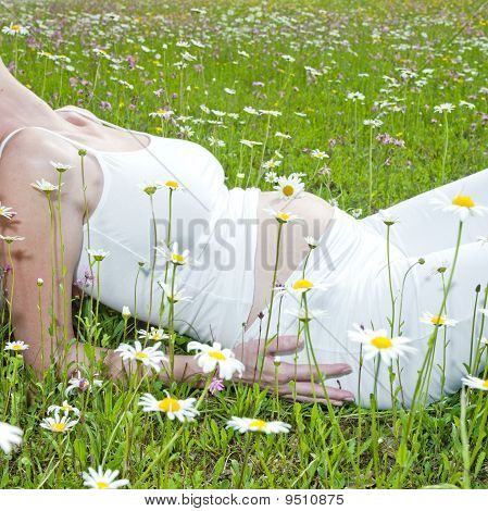 Pregnat Woman On Meadow