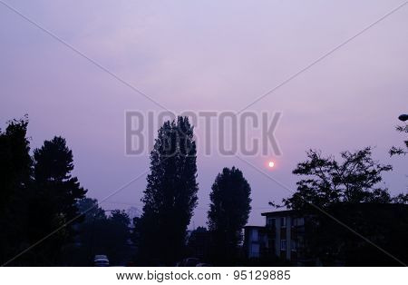 Apocalyptic Sun In A Dismally Smoky Gray Sky 3