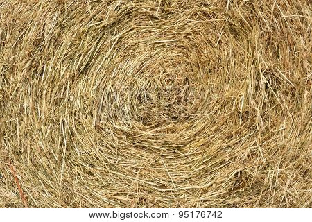 Hay Bale As Natural Background