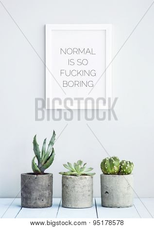 """MOTIVATIONAL POSTER WITH SUCCULENTS IN CONCRETE POTS """"NORMAL IS SO FUCKING BORING"""" poster"""