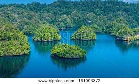 Many Rocks covered by Palmtrees in Passage between Gam and Waigeo, View Point near Warikaf Homestay. West Papuan, Raja Ampat, Indonesia.